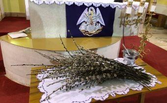 Kvetná nedeľa – Príhovor kňaza